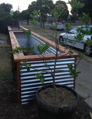 Tim's frontyard garden beds: building connections.