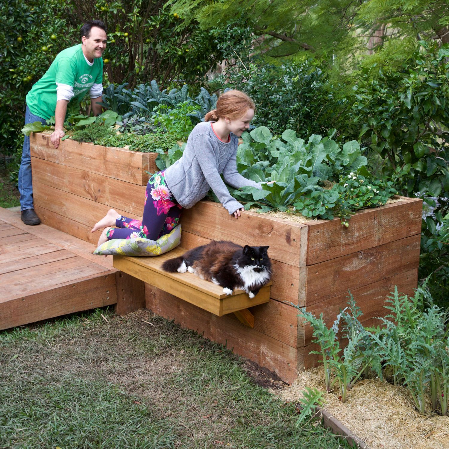 Picture of: Top 10 Most Popular Raised Garden Beds Bunnings Workshop Community