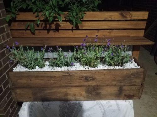 Lavender planter box from pallet scraps.