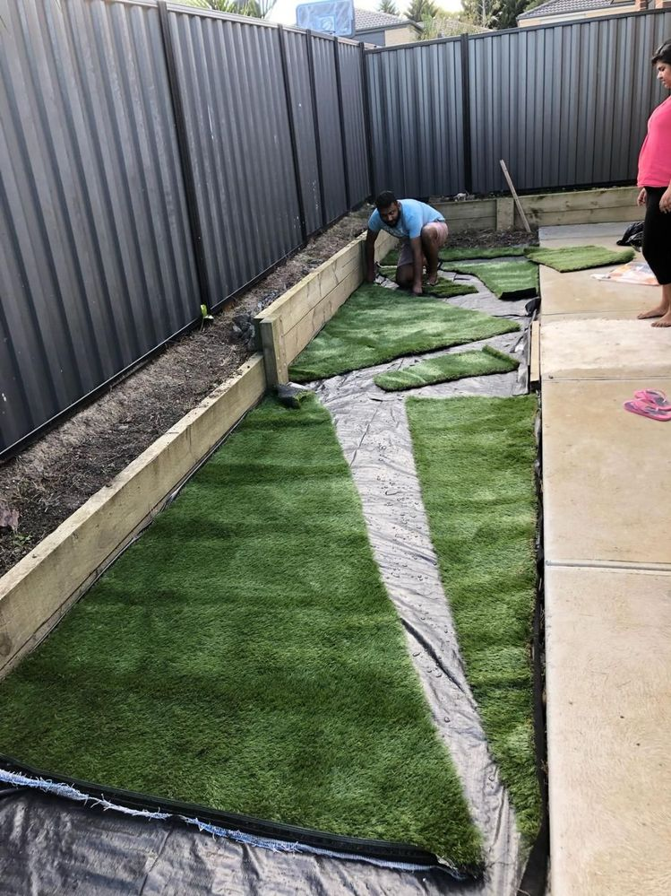 Small Backyard Makeover Cost 50 Or U Bunnings Workshop Community