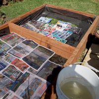 8. Use paper to supress grass and weeds.jpg