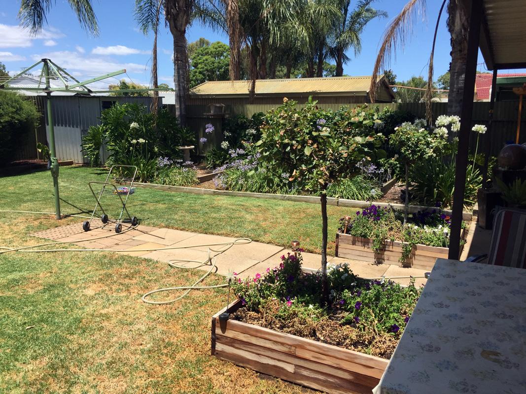 Garden26122015.jpg
