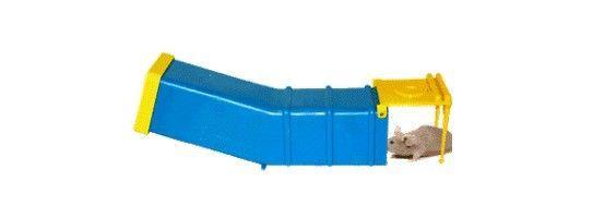 Mouse Trap_1.jpg