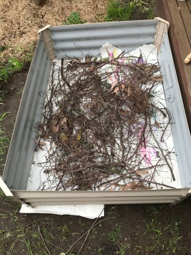 Raised bed two - phase 1 sticks and twigs
