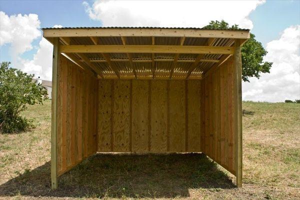 shelter idea.jpg