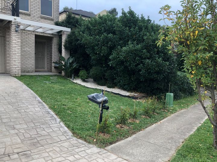 Right side of the frontyard