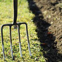 2. Soil preparation is key.jpg