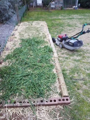 Combination of freshly mowed grass and hand pulled grass from just over the back fence. That gets hosed down as well.