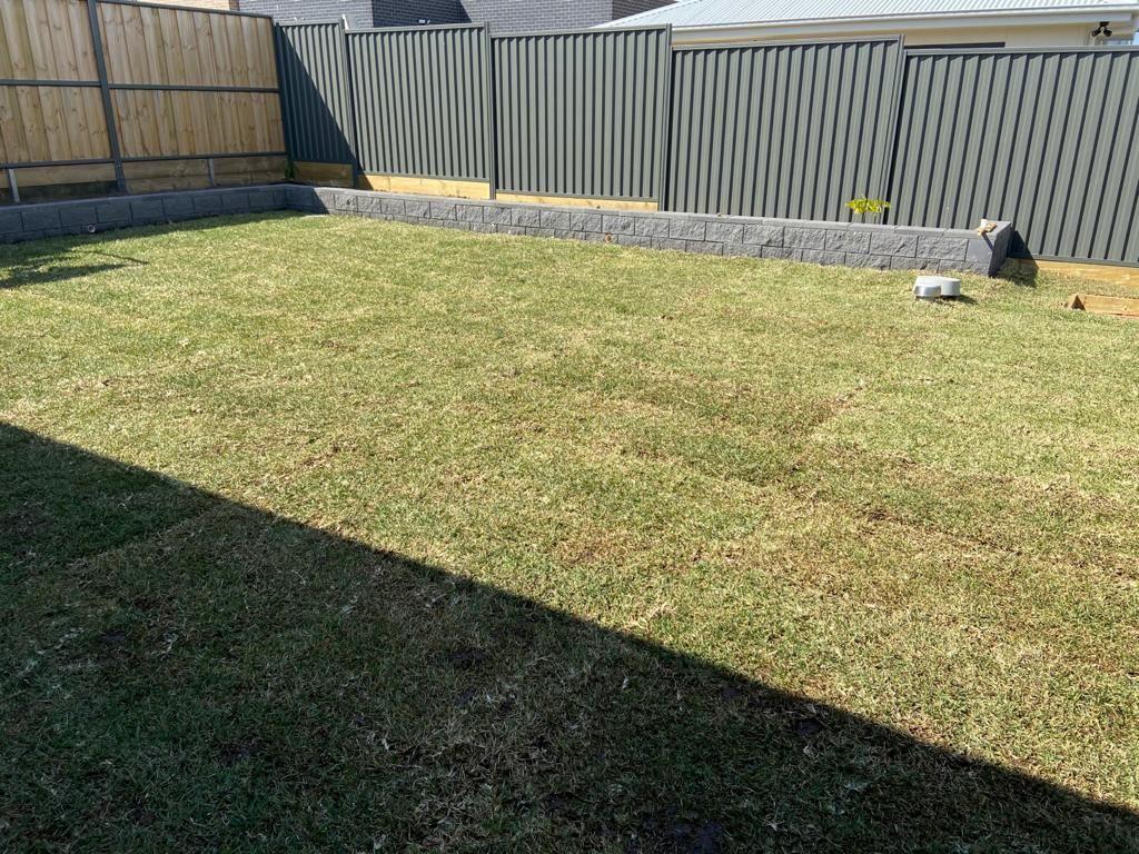 Whole Lawn