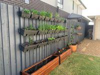 Merbau planter boxes and vertical garden