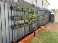 Merbau planter boxes and vertical garden