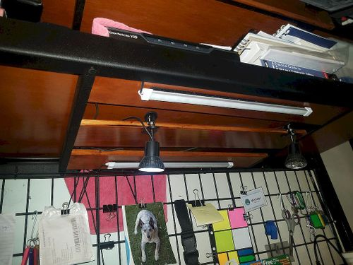Under the top shelf, i used the support to hold small stain wood with usb lights that are controlled via usb hub buttons.