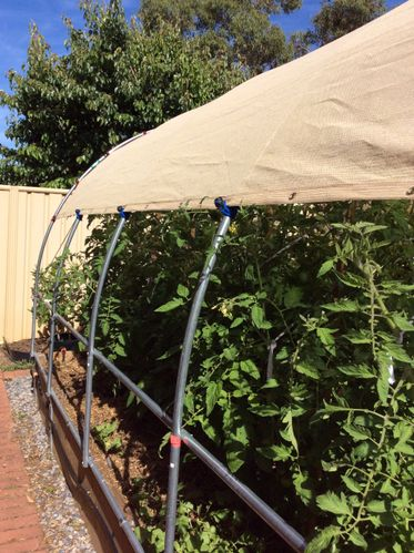 Our new hoop shade house