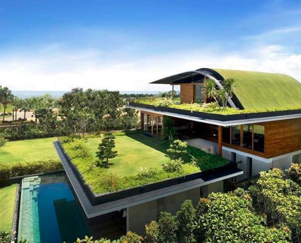 Rooftopgarden.png