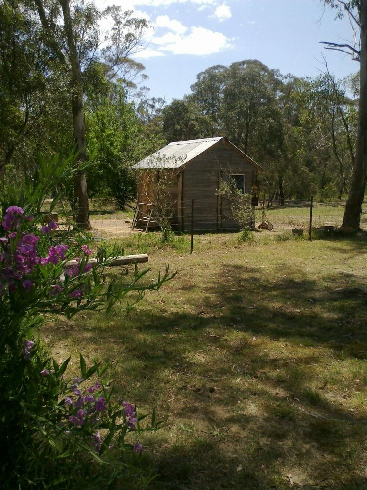 my garden shed.jpg