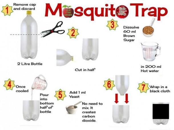 mosquito-trap-610x457.jpg