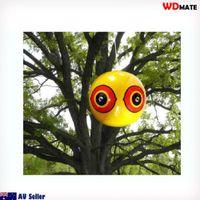 Scare Eye Balloon.jpg