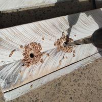 6.1 Drilling holes for string..jpg