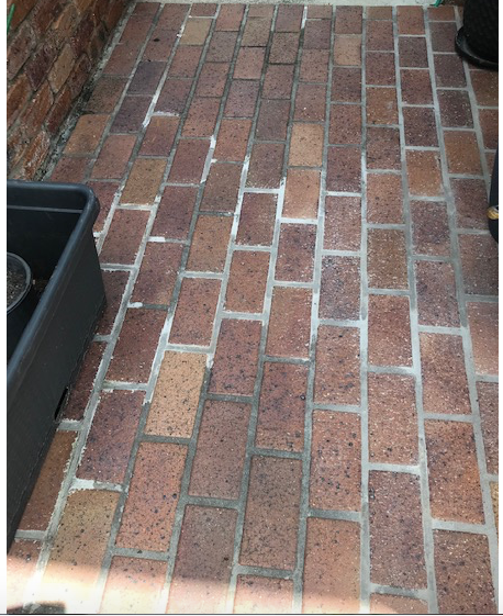 Section of paving regrouted recently.  Note the  white in the 'mix'