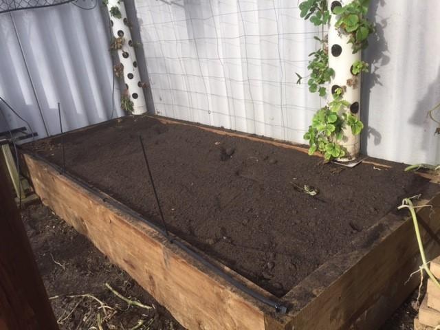 garden bed 1.jpg