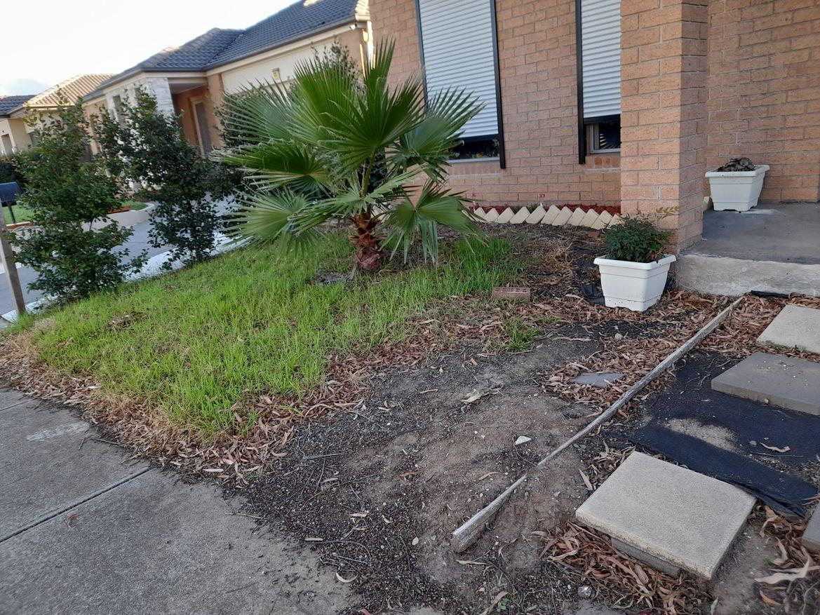 front yard -2.jpg