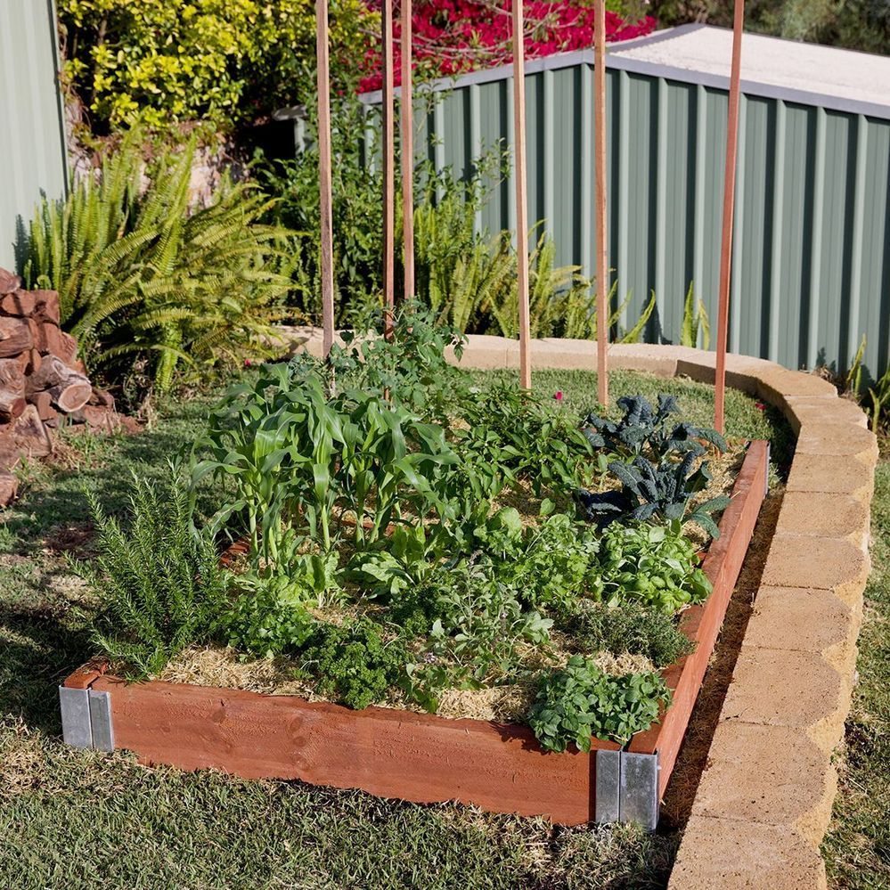 simple raised garden bed.jpg