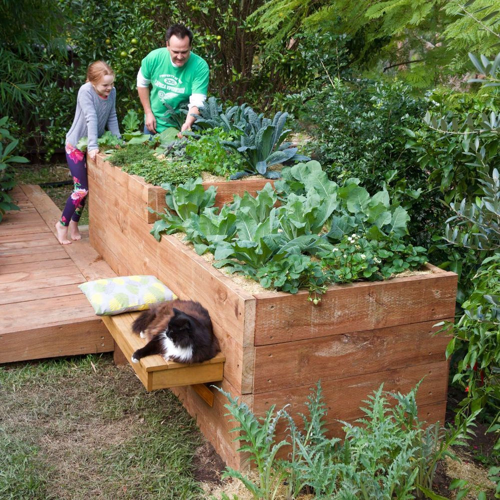 Raised garden bed.jpg