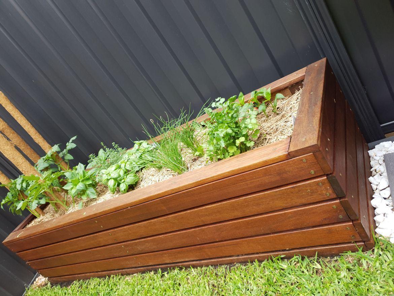 herb garden.jpeg
