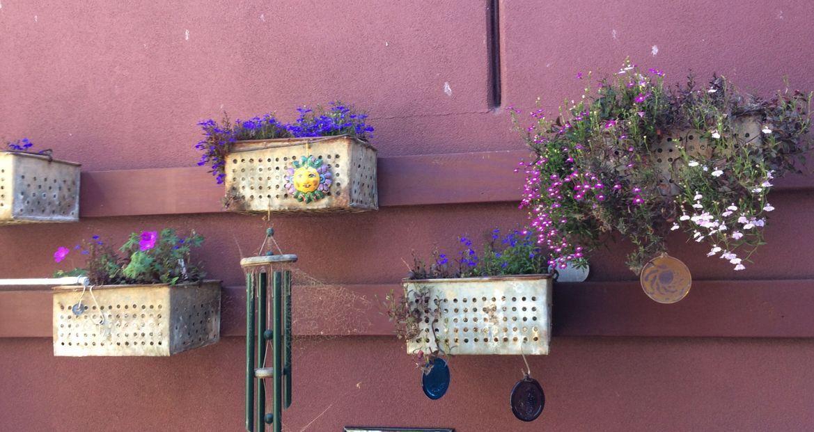 vertical flower display.jpeg