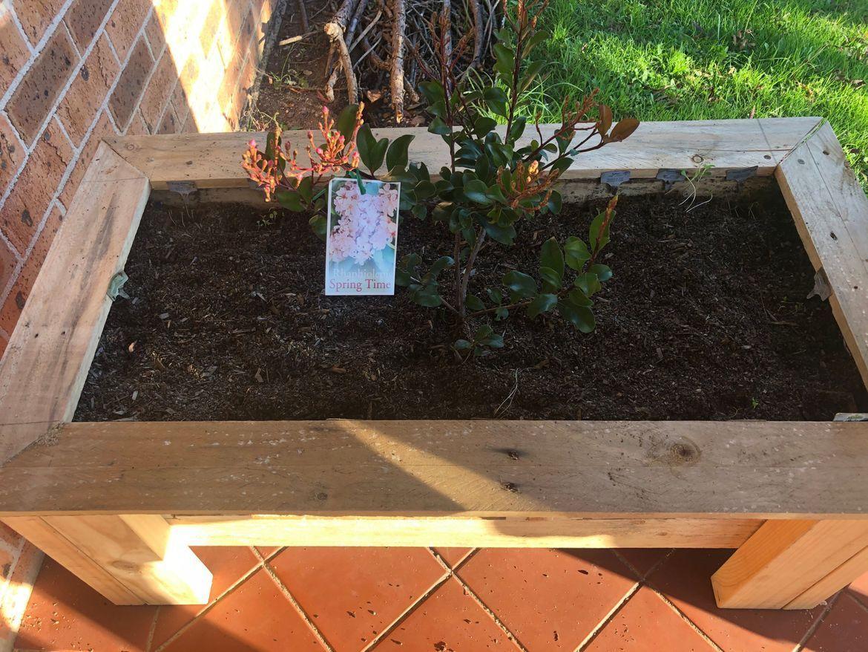 planter box recycled timber.jpeg