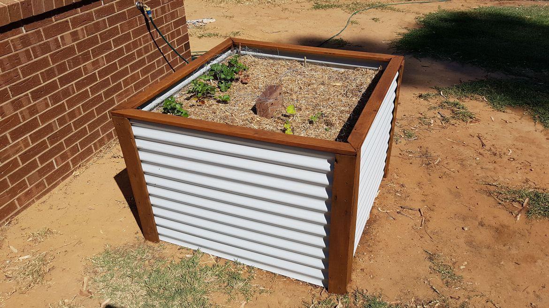 raised garden bed.jpeg