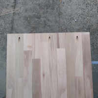 2.5 Top mounting holes drilled in upright board.png