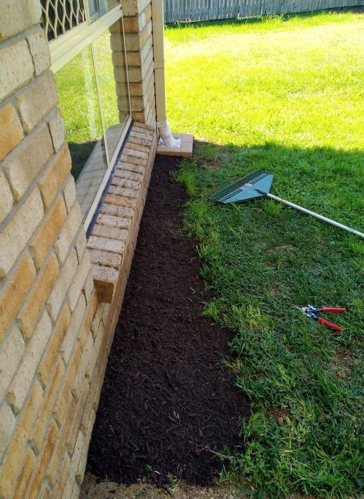 new soil.jpg