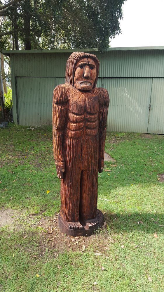Kilcoy Yowie in my garden