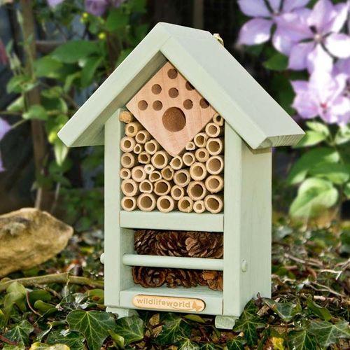 Bug-Biome-Home.jpg
