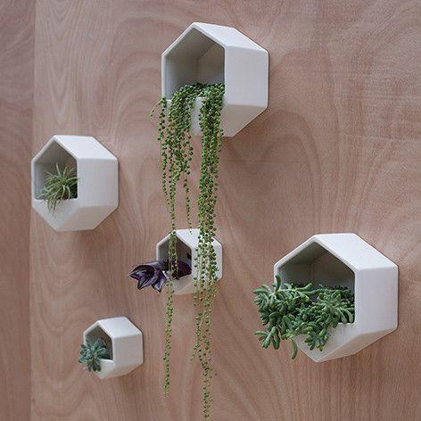 14-diy-ideas-for-your-garden-decoration-3-planters-plants-and-walls-decorative-wall-2 (1).jpg