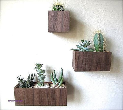 wall-decor-beautiful-decorative-planters-indoor-intended-for-decorations-15.jpg