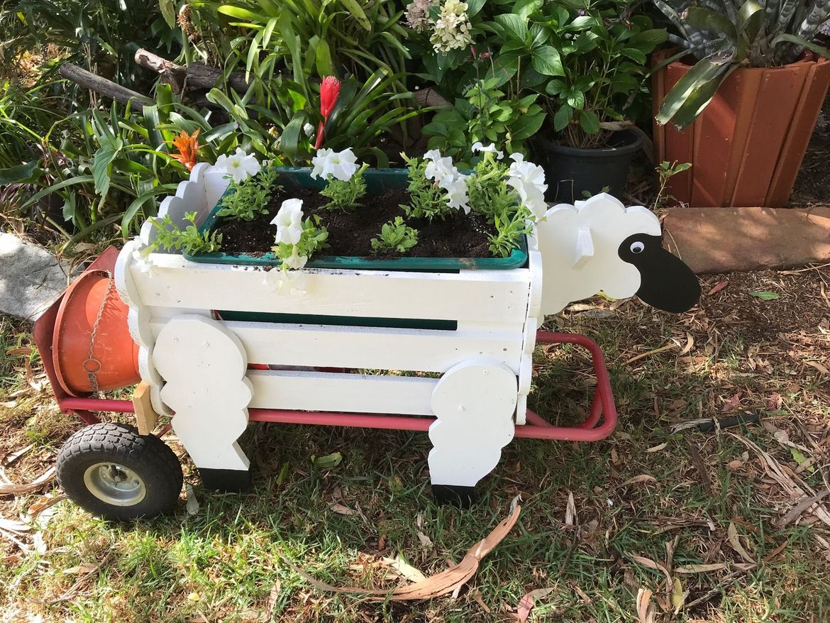 Sheep can be heavy, so need to think about a sheep carrier. The height of the legs needs to be enough, so a trolley can slide underneath the sheep.