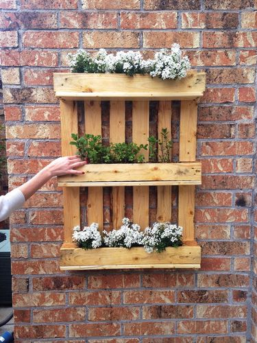 pallet-vertical-garden.jpg