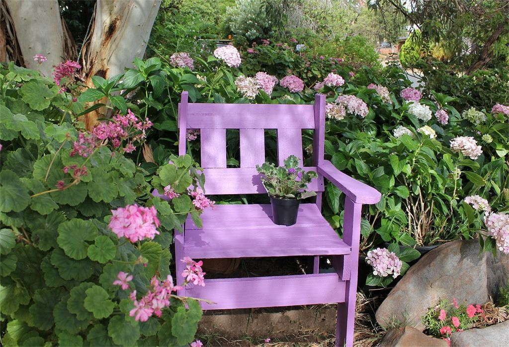 Nothing like sitting down in the garden.