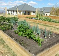 Timber sleepers are commonly used for raised garden beds