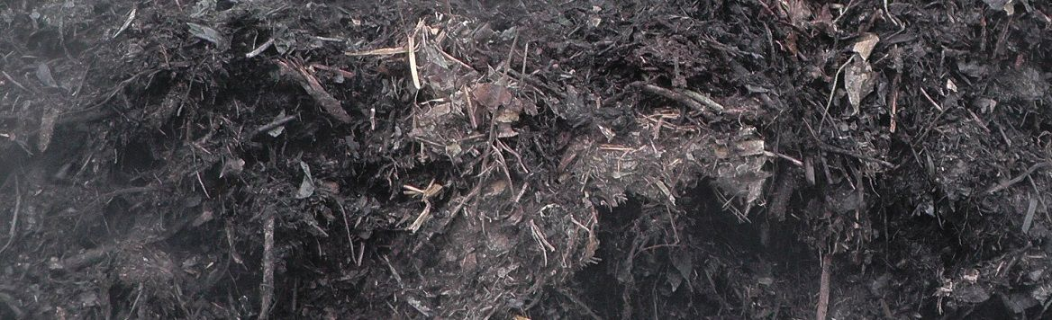 Compost_steaming_-_detail_2.jpg