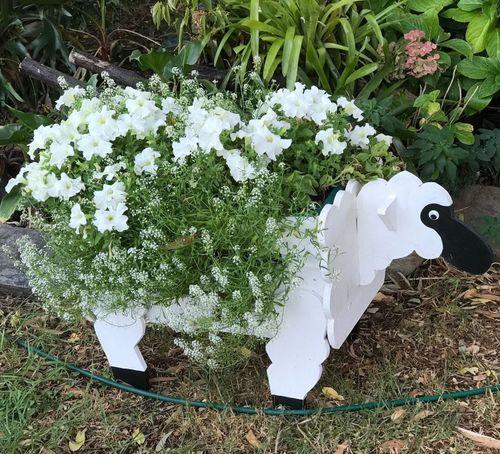 Jamespeter100 shared how to make a sheep planter