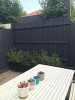 Courtyard fence makeover