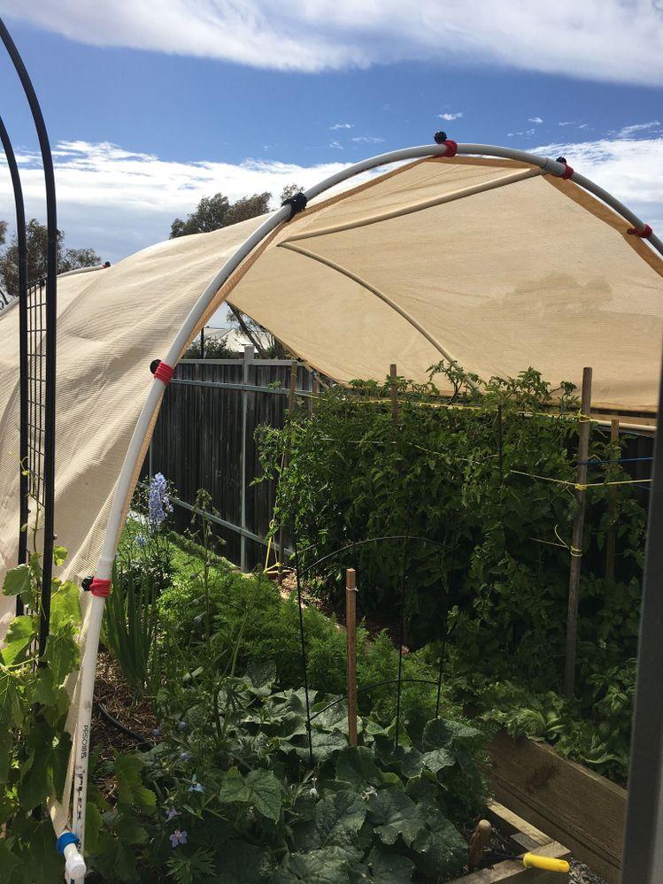 Home made shade hoop house