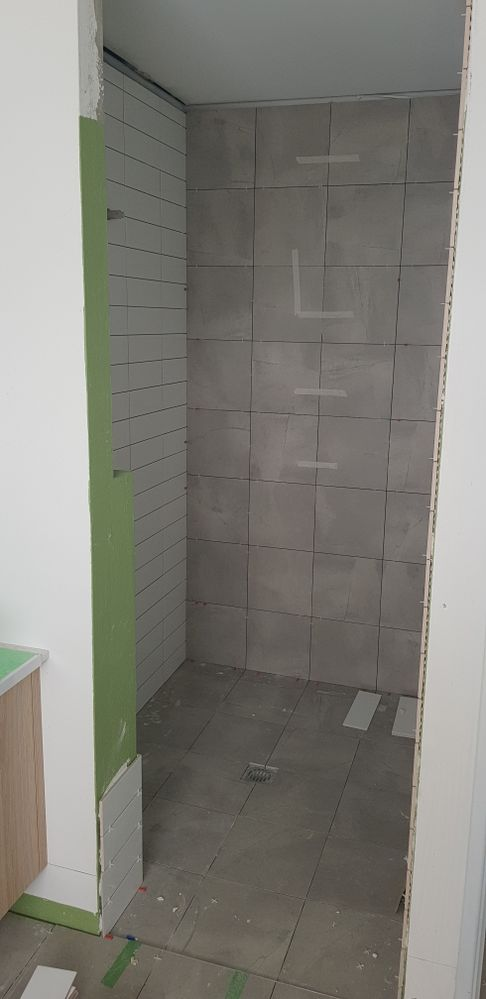 Ensuite shower with feature wall