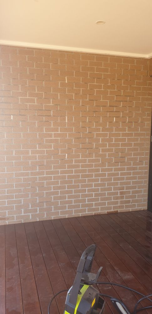 Our plain, boring brick wall. BEFORE