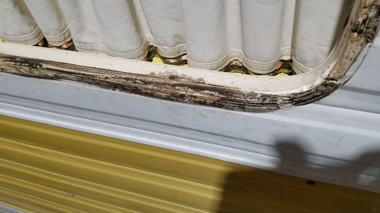 Window sealant on Viscount leaking