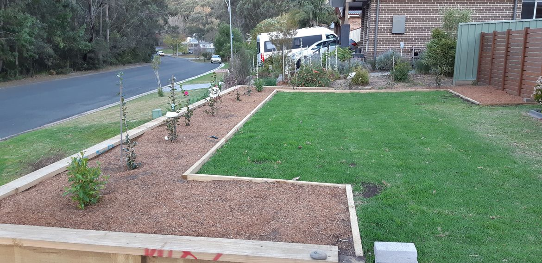 Garden bed.jpg