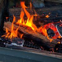 Step 3 - Add logs to fire.jpg